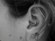 BEARDED LADY PIERCING NORTHAMPTON PROVINCETOWN BODY EAR DAITH AND INDUSTRIAL BARBELL EAR PIERCING